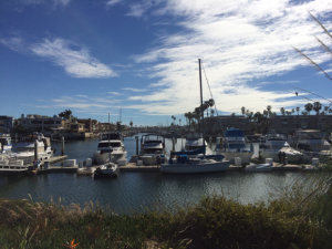 San Diego TIPPA