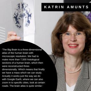 Katrin Amunts