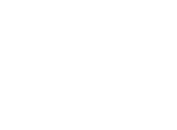 Prime Omics logo